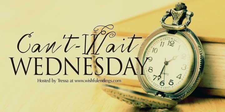 Can't Wait Wednesday: Beyond the Ruby Veil by Mara Fitzgerald